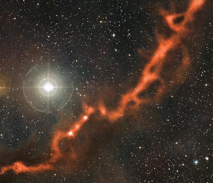 рождается звезда