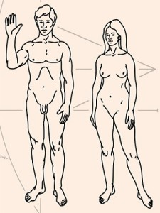 различия мужчин и женщин