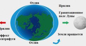 приливы и отливы на Земле