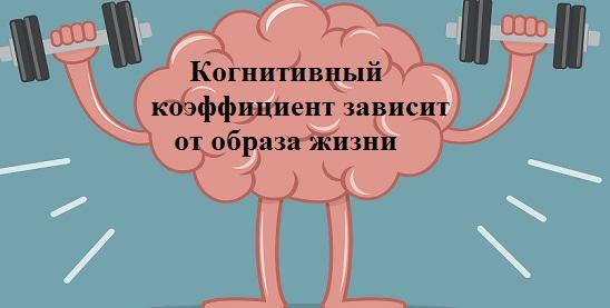 когнитивный фактор