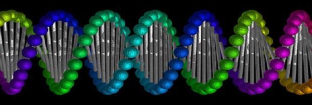 История развития генетики