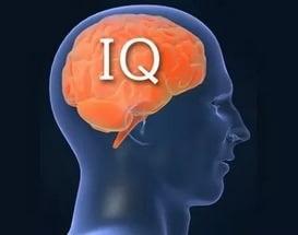 коэффициент интеллекта