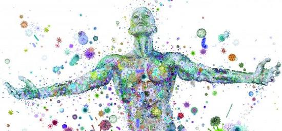 роль микроорганизмов в жизни человека