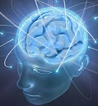 Кофеин влияет на мозг