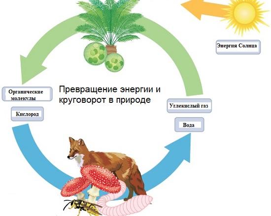 Превращение энергии