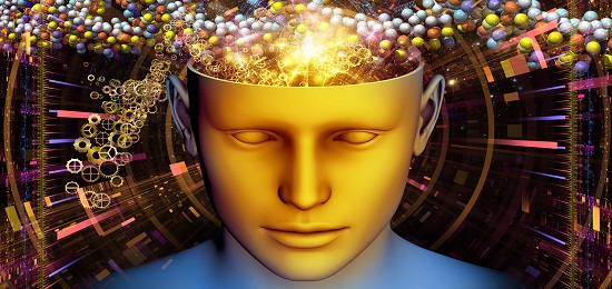роль памяти в жизни человека