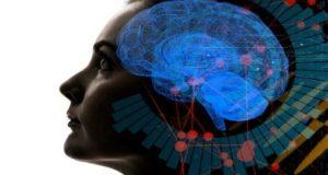 что хранит человеческая память