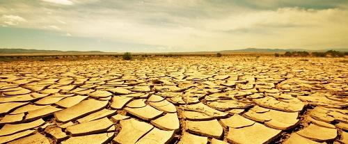 Самая сухая пустыня в мире