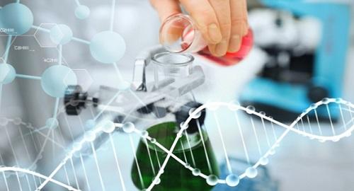 определение биотехнологии: Биотехнология - это термин, который используется для демонстрации использования системной биологии, направленной на производство продукта, соответствующего человеческому желанию.