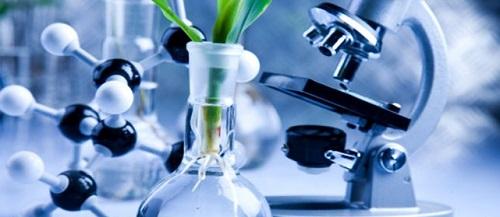 определение биотехнологии