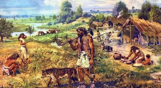 История сельского хозяйства