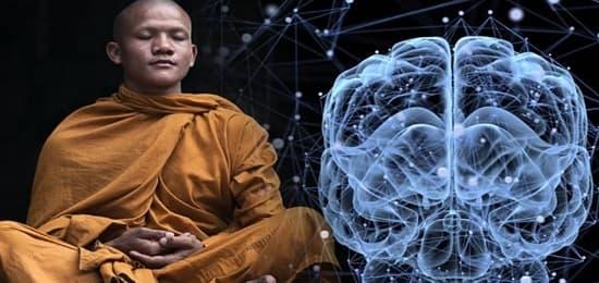 ум и тело